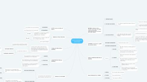 Mind Map: FISICA: MATERIA E SOSTANZA