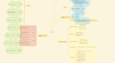 Mind Map: Gestação