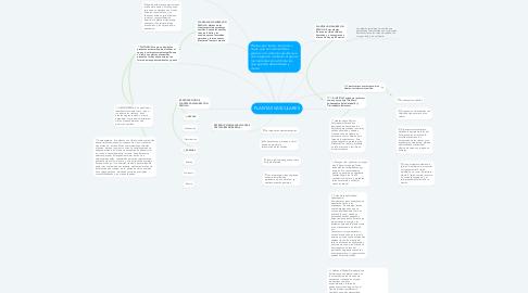 Mind Map: PLANTAS VASCULARES