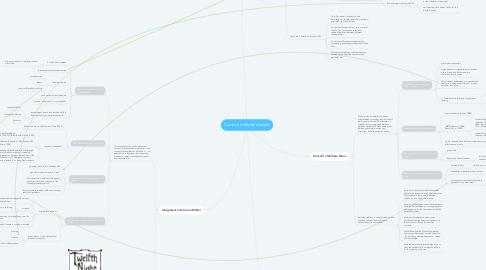 Mind Map: Curriculum Model Analysis