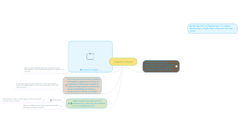Mind Map: Logistica integral