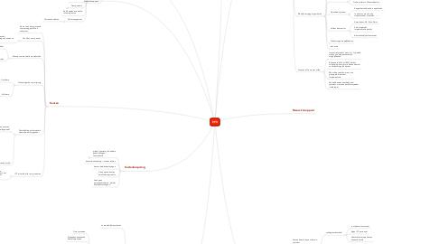 Mind Map: EPD