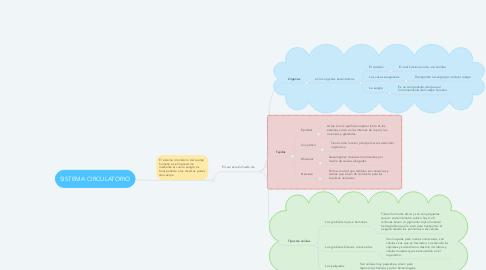 Mind Map: SISTEMA CIRCULATORIO