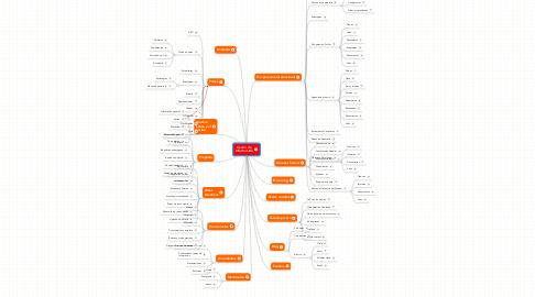 Mind Map: Centro de Información