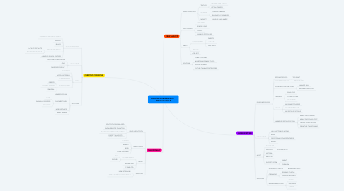 Mind Map: EDUCATION ISSUES OF  AUTISTIC BOYS