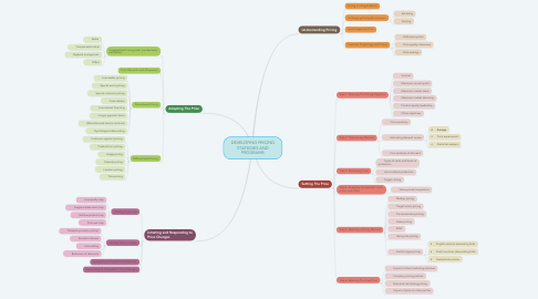 Mind Map: DEVELOPING PRICING STATEGIES AND PROGRAMS