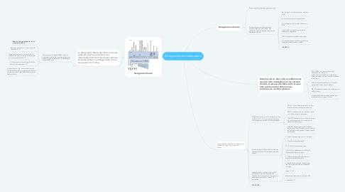Mind Map: Designación de rodamientos