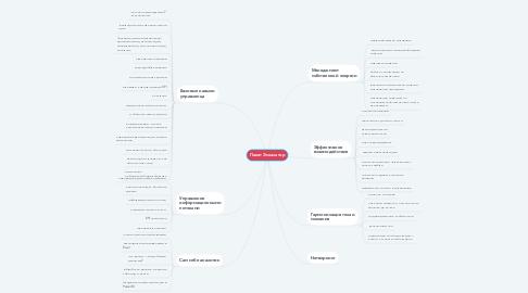 Mind Map: Пакет Эскалатор
