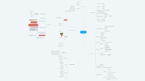 Mind Map: Вино