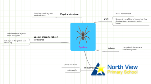Mind Map: Spiders