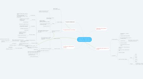 Mind Map: Thème D4 : Protection et exploitation des logiciels