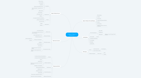 Mind Map: Situation Clinique de Monsieur G.