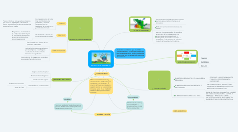 Mind Map: PRODUCTO INTERNO BRUTO