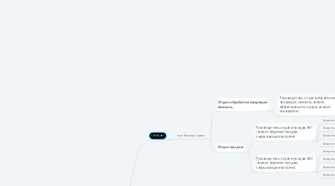 Mind Map: ДИРЕКТОР ПО ПРОДАЖАМ