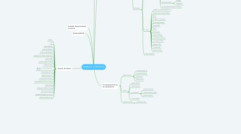 Mind Map: GERÊNCIA COMERCIAL