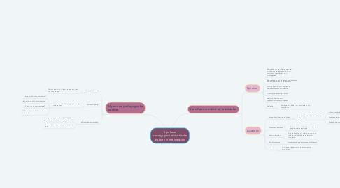 Mind Map: Synthese pedagogisch-didactische wenken in het leerplan