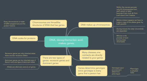 Mind Map: DNA, deoxyribonucleic acid, makes genes