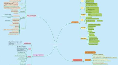 Mind Map: การพยาบาลเด็กที่มีปัญหาสุขภาพ ระบบปัสสาวะ