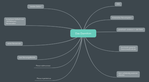 Mind Map: Das Darmhirn