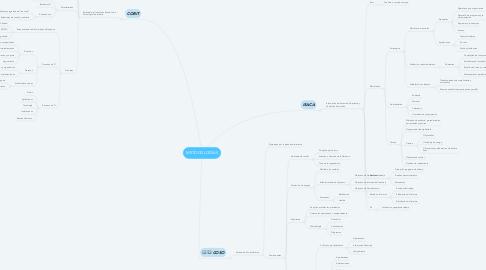 Mind Map: METODOLOGÍAS