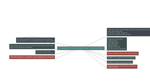 Mind Map: A ORGANIZAÇÃO DO ESPAÇO AGRÁRIO MUNDIAL - SISTEMA É EXTENSIVO