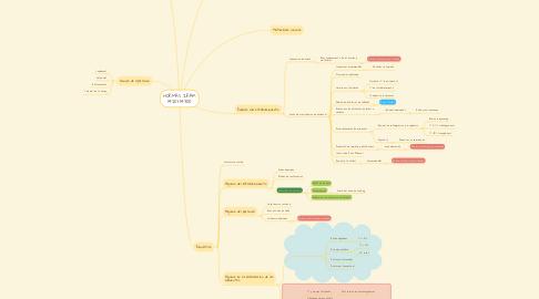 Mind Map: NORMAS IRAM 14201-14300