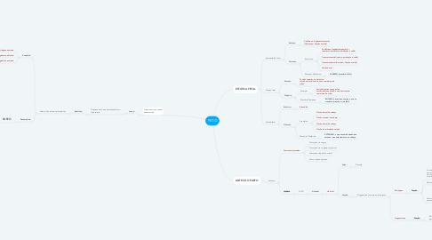 Mind Map: FETO