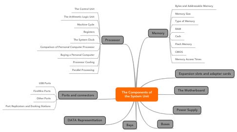 Mind Map: The Components of