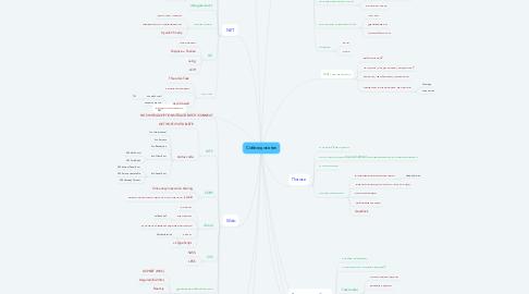 Mind Map: Собеседование