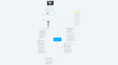 """Mind Map: Critical Review of """" What are the Pros and Cons of Social Networking Sites?"""" prepared by Chan Shu Wei, Tong Li Sven, Lee Li Xian"""