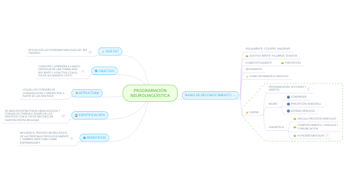 Mind Map: PLAN DE NEGOCIO