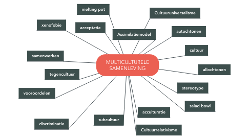Mind Map: MULTICULTURELE SAMENLEVING