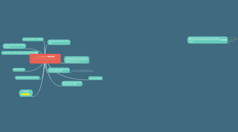 Mind Map: Leti cruz