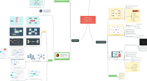 Mind Map: Mindmaps im Projektmanagement: Kollaborative Projektplanung und mehr
