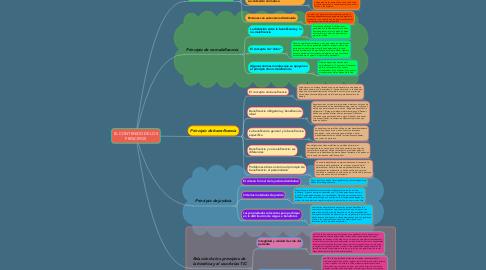 Mind Map: EL CONTENIDO DE LOS PRINCIPIOS
