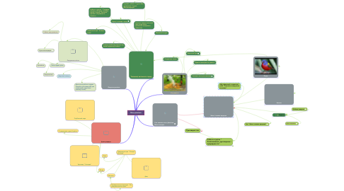 Mind Map: Моє довкілля