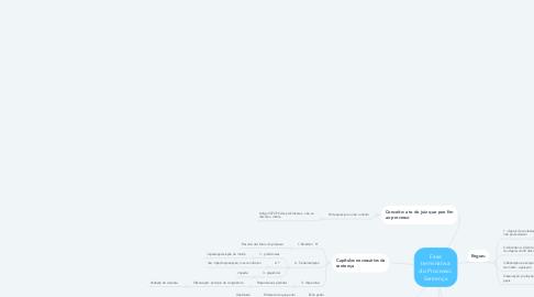 Mind Map: Fase terminativa do Processo: Sentença