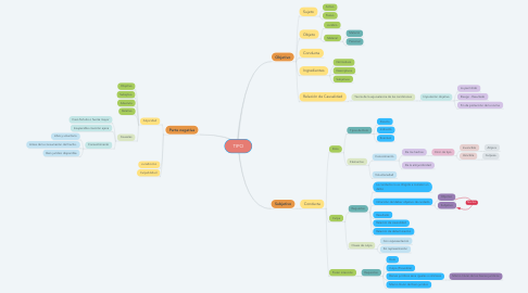 Mind Map: TIPO
