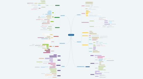 Mind Map: Historiografía