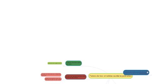 Mind Map: Fatores de risco e medidas cautelares pertinentes