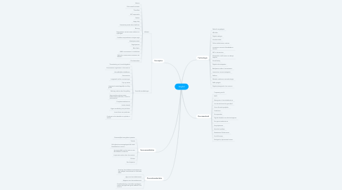 Mind Map: Veghel