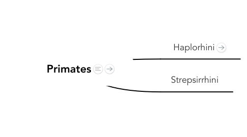 Mind Map: Primates