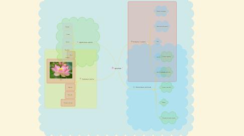 Mind Map: цветок