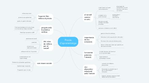Mind Map: Procès d'aprenentatge
