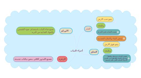 Mind Map: أجزاء النبات