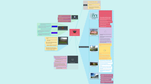 Mind Map: System of higher education in the USA