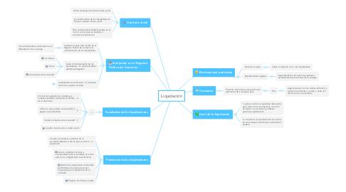 Mind Map: Liquidación