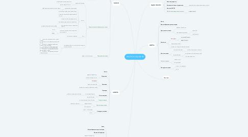 Mind Map: ЭКСПО СОЦ.СЕТИ