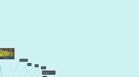 Mind Map: Sector primario en Nicaragua