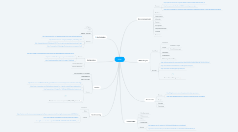 Mind Map: BPM